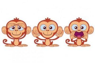 scimmiettone_sensoriali_530x400